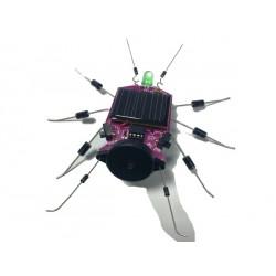 Kit insecte à énergie solaire: Criquet d'ambiance