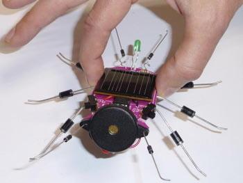 criquet jouet solaire
