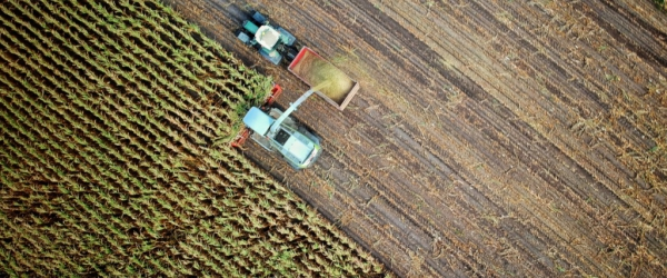 L'agriculture durable : est-ce possible ?